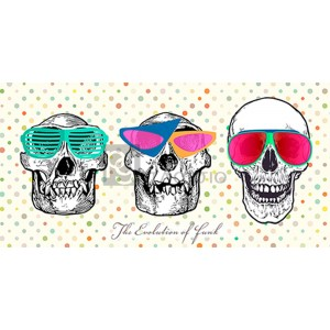 Steven Hill - The evolution of funk