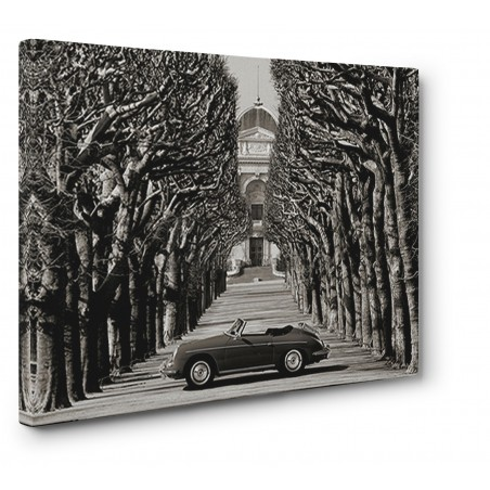 Gasoline Images - Roadster in tree lined road, Paris (BW)