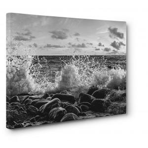Pangea Images - Waves crashing, Point Reyes, California (BW)