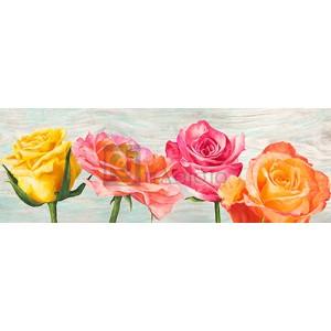 Jenny Thomlinson - Funky Roses