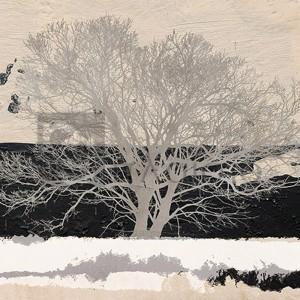 Alessio Aprile - Silver Tree (detail)