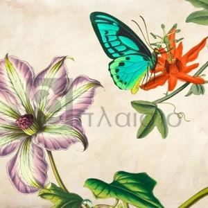 Remy Dellal - Panneau Botanique VI