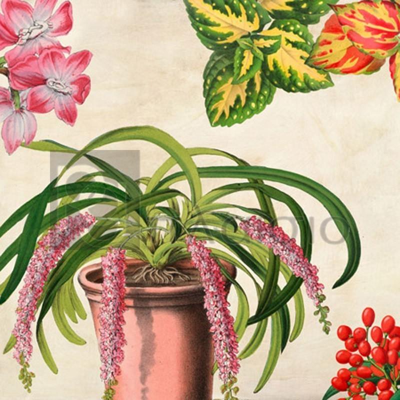 Remy Dellal - Panneau Botanique VII