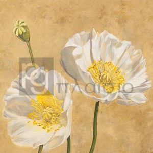 Luca Villa - Poppies on Gold I