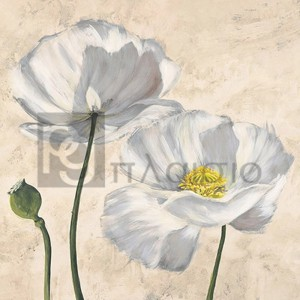 Luca Villa - Poppies in White I