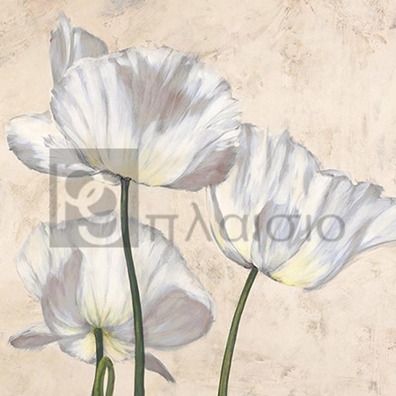 Luca Villa - Poppies in White II
