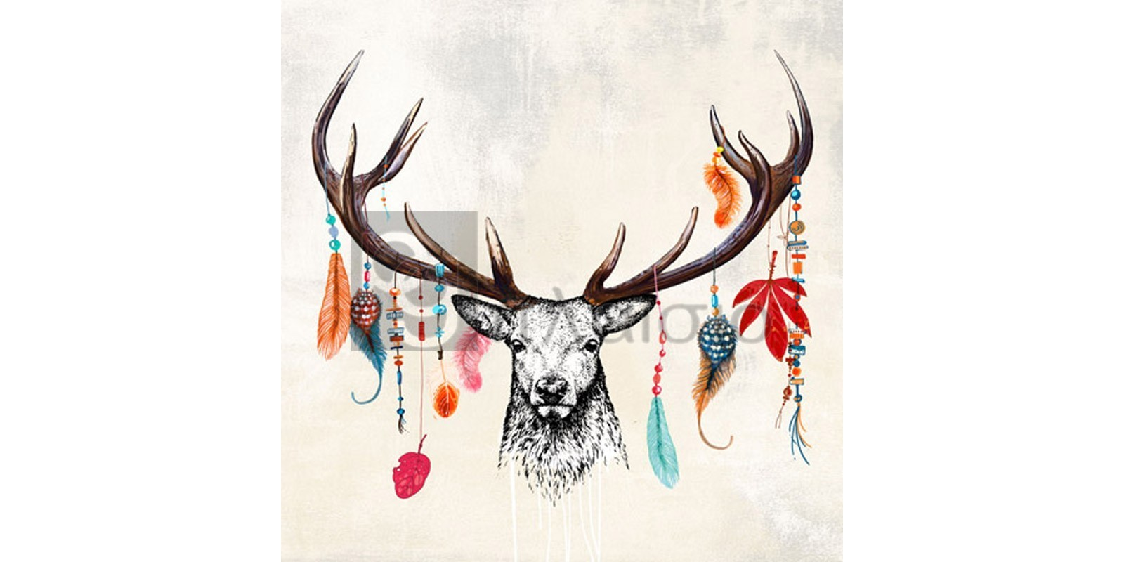 Matt Spencer - Wild Mesmerizer