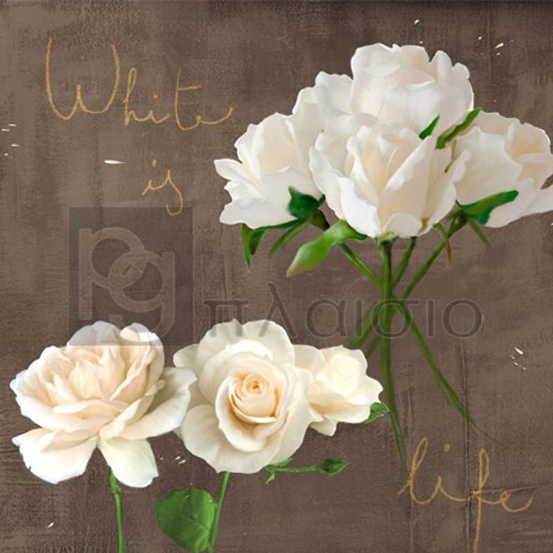 Teo Rizzardi - White Roses