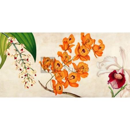 Remy Dellal - Panneau Botanique II