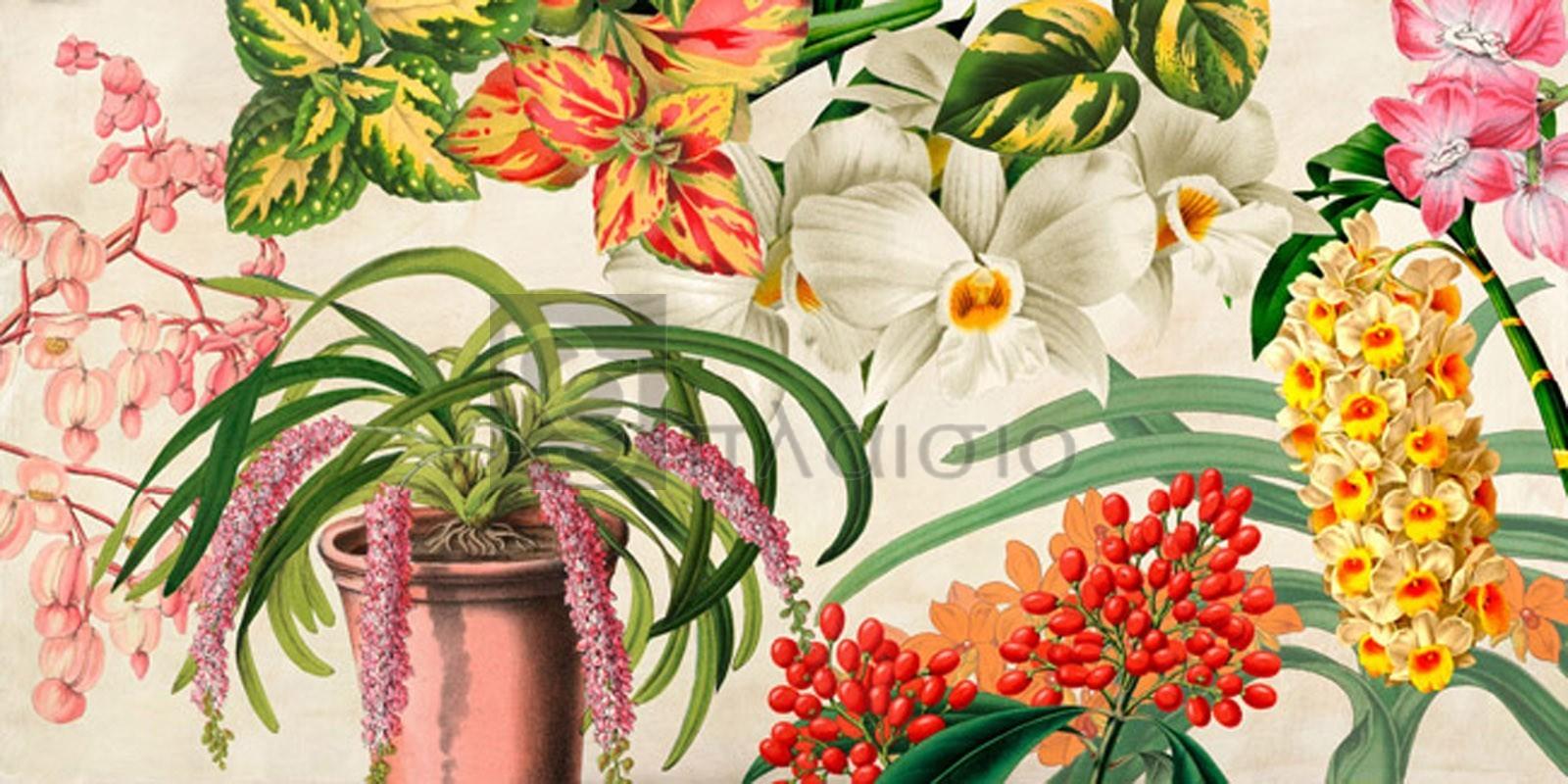 Remy Dellal - Panneau Botanique IV