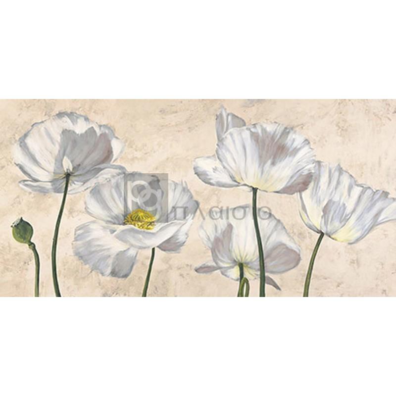 LUCA VILLA - Poppies in White