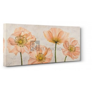 LUCA VILLA - Poppies in Pink