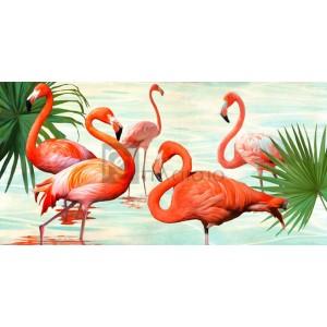 TEO RIZZARDI - Flamingos