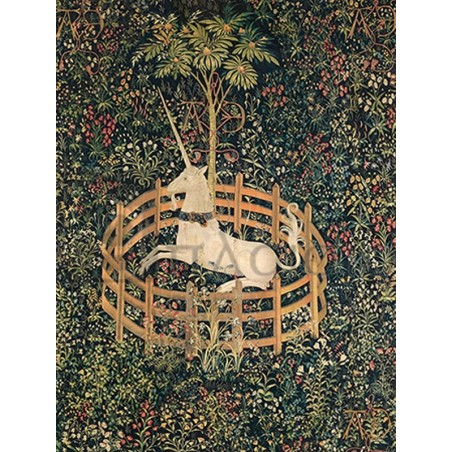 ANONYMOUS - Unicorn in Captivity