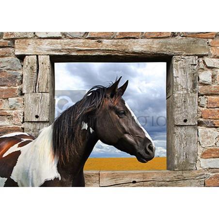 JULIAN LAUREN - Painted Horse