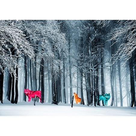 ARLO WREN PHOTOS - Kings of the Wild Frontier