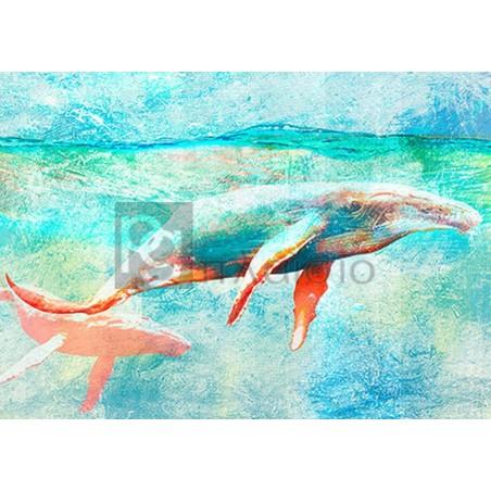 ARLO WREN PHOTOS - Seas of Serenity