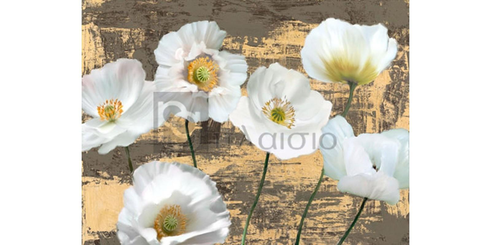 LEONARDO SANNA - Washed Poppies (Ash & Gold)