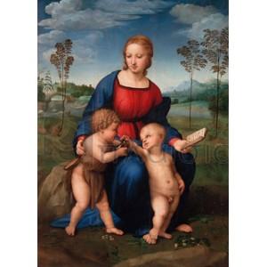 RAFFAELLO - Madonna del cardellino