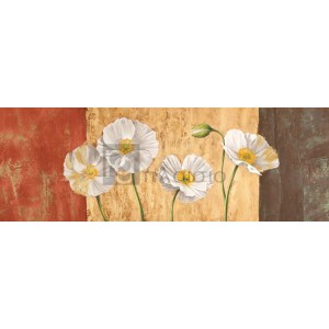 Poppies on Smooth Background