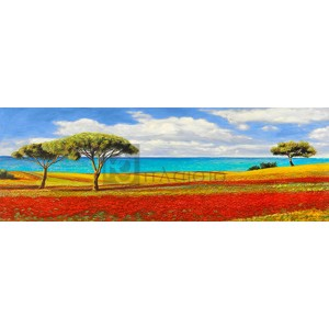 ANGELO MASERA - Mediterraneo