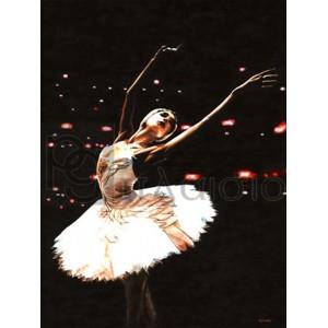 Richard Young - Prima Ballerina