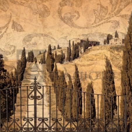 Colin Floyd - Tuscany II