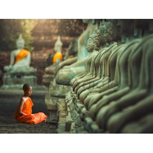 Pangea Images - Young Buddhist Monk praying, Thailand