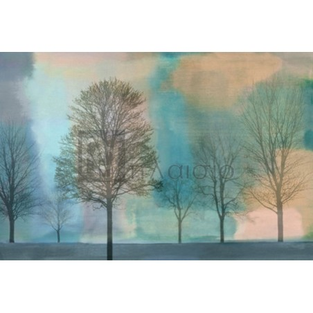 Chris Donovan - Misty Morning II