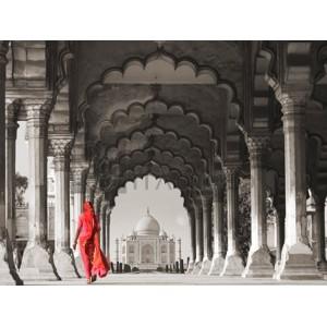 Gasoline Images - Woman in traditional Sari walking towards Taj Mahal (BW)
