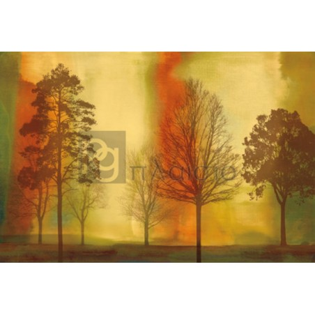 Chris Donovan - Sunset II
