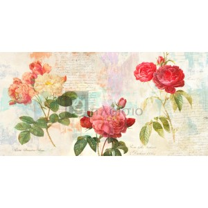 Eric Chestier - Redouté's Roses 2.0