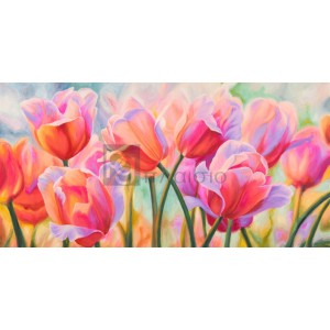 Cynthia Ann - Tulips in Wonderland